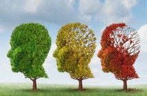 three-stages-of-alzheimers-disease