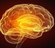 Leaky blood brain barrier may be responsible for Alzheimer's disease.