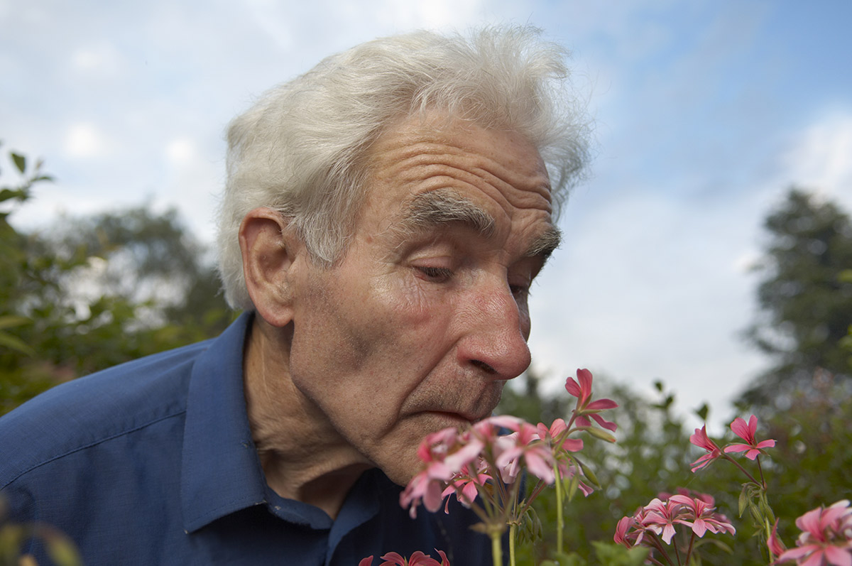 Olfactory Stimulation for Alzheimer's and Dementia