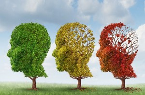 Alzheimer's FAQ |Three stages of alzheimers disease