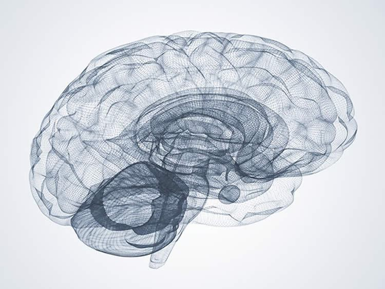 Research at MIT conclude that we might be able to find memories lost to dementia.