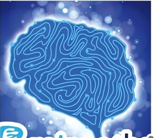 Brainpaths® provides a direct connection from the fingertips to the brain. Sensory Stimulation is Brain Stimulation.